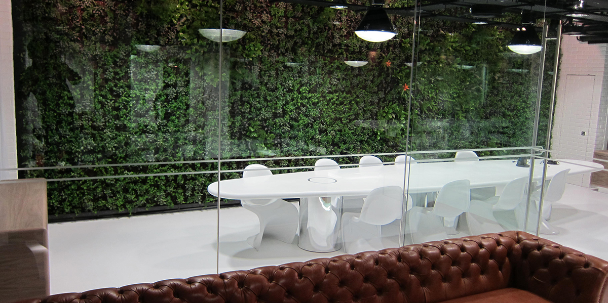 Example of biophilic design, feature wall